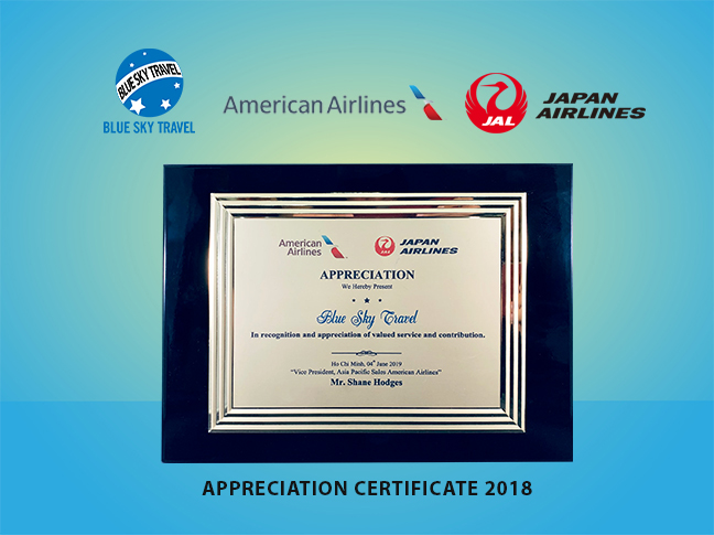 American Japane Airlines 2019